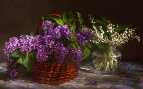 Picture white, spring, purple, lilies of the valley, lilac, bouquets