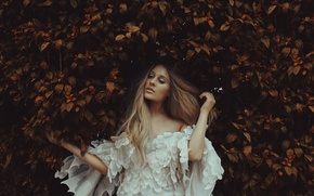 Picture autumn, leaves, girl, mood, hair, dress, the bushes