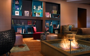 Picture flowers, fire, books, interior, chairs, sofas, shelves