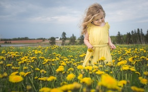 Picture girl, flowers, mood, dandelions, nature, meadow