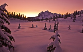 Picture the sky, snow, trees, sunset, mountain, Winter