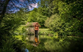 Picture trees, river, England, house, England, The Cotswolds, Cotswolds, Stroud District