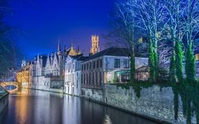 Picture trees, night, bridge, lights, home, channel, Belgium, Bruges