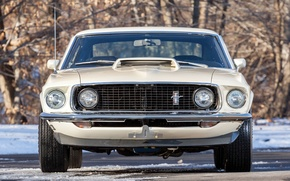 Picture Mustang, Ford, Boss, 429