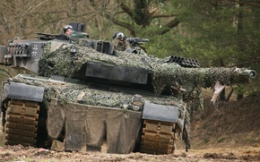 Picture forest, trees, tank, Leopard 2A6