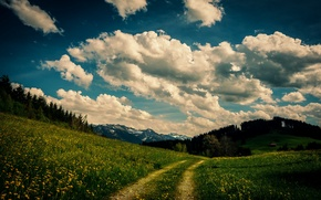 Picture the sky, grass, clouds, trees, flowers, mountains, house, the way