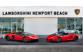 Picture Lamborghini, Gallardo, Aventador, LP570-4 Spyder Performante, 50th Anniversary Edition, LP720-4 Roadster