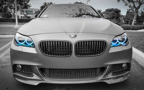 Picture bmw, blue, gray, angel eyes, headlight