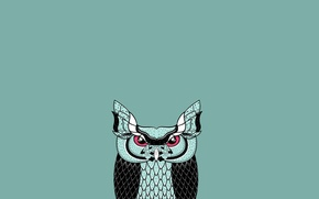 Picture owl, bird, minimalism, blue background, owl