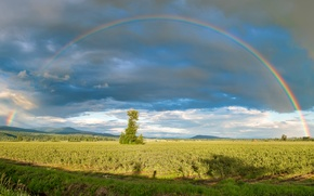 Picture field, the sky, clouds, tree, hills, rainbow, garden, Canada, panorama, Canada, British Columbia, Pitt Meadows
