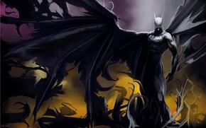 Wallpaper Batman, hero, wings, 151