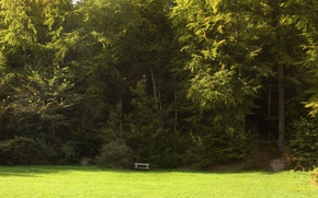 Picture field, grass, trees, grass, Nature, trees, field, bench, bench