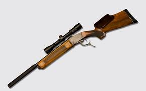 Wallpaper weapons, rifle, sniper, optics