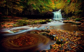 Picture autumn, forest, foliage, waterfall, excerpt, Yorkshire, October, Northern England