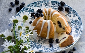 Picture flowers, berries, chamomile, blueberries, plate, BlackBerry, cupcake