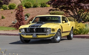 Wallpaper Mustang, Ford, Mustang, Boss 302, Ford, 1970