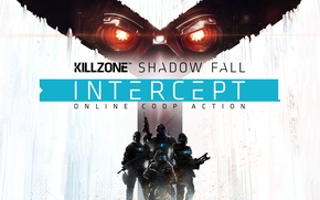 Picture Game, Sony Computer Entertainment, Killzone: Shadow Fall