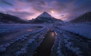 Picture winter, snow, mountains, night, Canada, Albert, moonlight, Jasper national Park