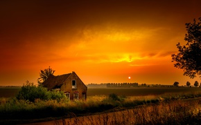 Picture field, night, nature, house
