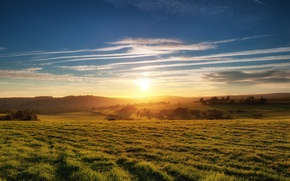 Picture the sky, grass, the sun, clouds, trees, Field, horizon