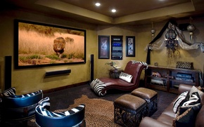 Picture flowers, design, style, room, sofa, interior, Leo, pillow, TV, Zebra, chairs, lions, Safari, African style