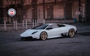 Picture Lamborghini, with, Murcielago, Gold, HRE, Brushed, S107