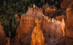 Picture sunset, mountains, tree, rocks, Utah, USA, Bryce Canyon National Park