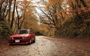 Picture autumn, leaves, BMW, bmw. red