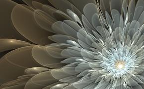 Picture flower, pattern, petals, art, white