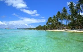 Picture sea, the sky, tropics, palm trees, shore, ship, yacht, the Maldives