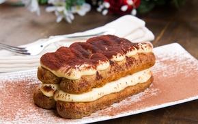 Wallpaper cake, cake, cake, dessert, sweet, sweet, cream, dessert, tiramisu, tiramisu
