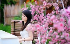 Picture summer, girl, music, garden, piano