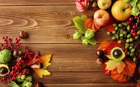 Picture autumn, leaves, apples, still life, autumn, leaves, fruit, still life, berries, apples, harvest