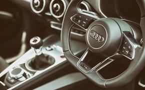 Picture Audi, the wheel, salon, Interior, TTS