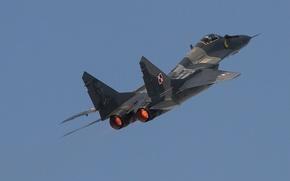 Wallpaper flight, Fulcrum, fighter, MiG 29A, multipurpose
