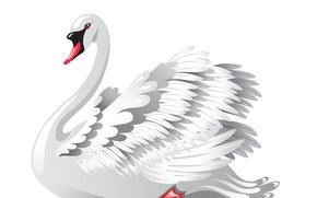 Picture background, vector, art, Swan