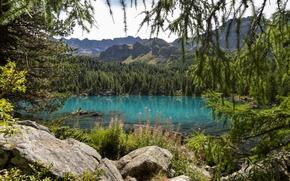 Picture wallpaper, nature, lake