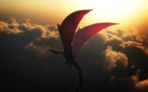 Picture clouds, flight, sunset, dragon, in the sky