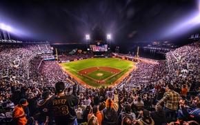 Wallpaper night, lights, baseball, california, CA, night, san francisco, baseball