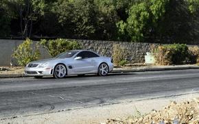 Picture silver, silver, Mercedes, wheels, Mercedes, SL65, Benz, rearside, metellik