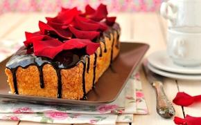 Picture food, chocolate, cake, cake, cake, dessert, food, sweet, chocolate, dessert, petals, roses, cups