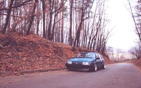 Picture road, machine, trees, nature, Wallpaper, car, bucket, wallpapers, nine, 2109, VAZ, Lada, Taz