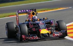 Picture Formula 1, Red Bull, Daniel Ricciardo