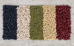 Wallpaper beans, variety, colors
