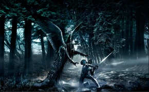 Picture forest, the victim, angel, the demon, attack, black wings, damn place, Fallen