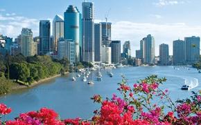 Picture the city, Park, yachts, skyscrapers, Australia, Brisbane