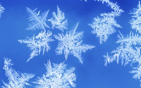 Picture winter, frost, snowflakes, pattern, window, frost