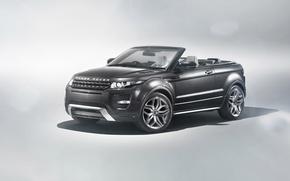 Picture auto, Land Rover, Range Rover, convertible, Evoque, Convertible