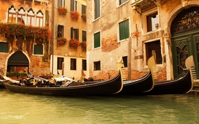 Picture water, flowers, Windows, home, Venice, Italy, gondola