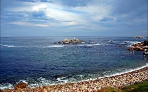 Picture sea, beach, birds, stones